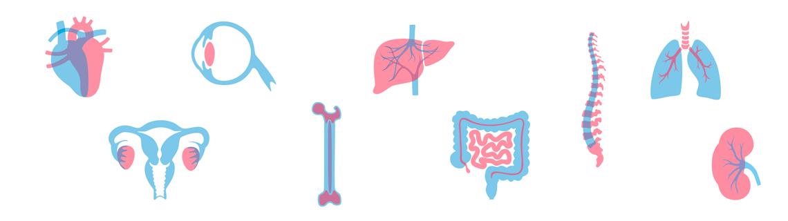 Visuel don d'organes