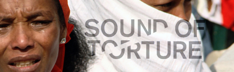 Sound of Torture (2013)