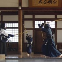 Les sports universitaires ont le plaisir de vous faire participer au Kendo au travers d'un club de la place, le Shung do Kwan.  Dans ce partenariat, le club vous proposera un tarif étudiant et un encadrement professionne